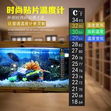 鱼缸养suLED水族ue装饰高精度贴片挂钩吸盘温度计