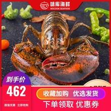 龙虾波sz顿鲜活特大pw龙波斯顿海鲜水产活虾450-550g*2