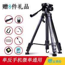 云腾6sz8三脚架 nw反相机EOS60D750D800D700D R6 200