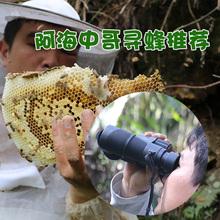 阿海中sz户外运动寻mc蜂找马蜂双通充氮防水望远镜高清专业