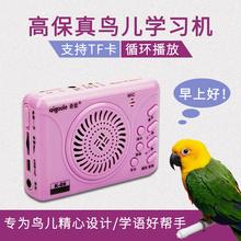鹦鹉学te话八哥学说go练器语音鸟类牡丹录音机插卡充电
