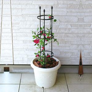 铁线莲支架 攀爬架爬藤植物花架<span class=H>鲜花</span> 园艺支架 花架爬架