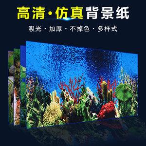 鱼缸背景纸画高清图3d立体壁画水族箱背景图贴纸壁纸鱼缸背景画