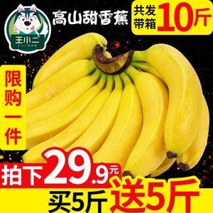 【买1送1】广西香甜大香蕉新鲜当季<span class=H>水果</span>包邮应季芭蕉大蕉带箱10斤