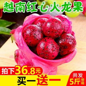 【买一送一】越南红心火龙果 新鲜当季<span class=H>水果</span>红肉大果带箱5斤装包邮
