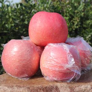 现摘红富士水晶富士冰糖心大<span class=H>苹果</span>脆甜孕妇水果买一送一共10斤包邮