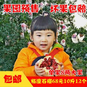 陕西特产 临潼<span class=H>石榴</span>大红甜新鲜时令孕妇水果包邮10斤装 非软籽红心