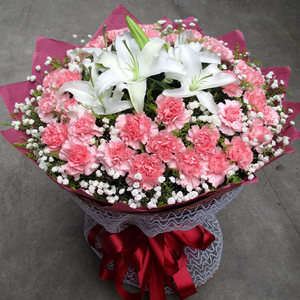 康乃馨小花束长沙鲜花同城速递南京天津杭州西安成都生日送花上门
