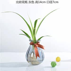 室内圆球<span class=H>水培</span>花盆玻璃花瓶透明水养植物花卉器皿摆件玻璃花<span class=H>水培</span>