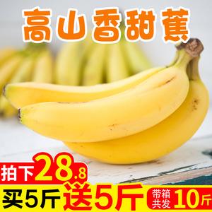 源鲜汇 高山香甜自然熟大香蕉新鲜<span class=H>水果</span> 当季包邮整箱10斤非粉蕉