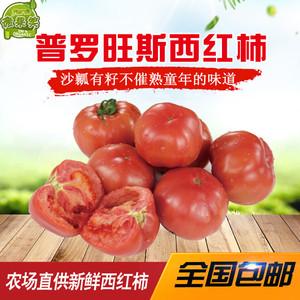 海阳普罗旺斯 西红柿 孕妇生吃新鲜<span class=H>蔬菜</span><span class=H>水果</span>番茄酸甜口 4.5斤包邮
