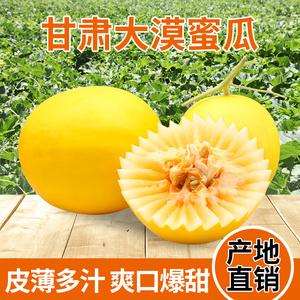 民勤哈密瓜新鲜<span class=H>水果</span>沙漠蜜瓜金红宝包邮当季黄河蜜瓜约7斤2个装