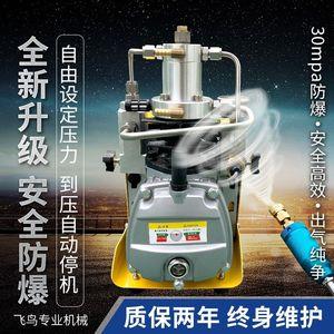 高压打气机30mpa 电动打气泵40mpa 小型<span class=H>充气泵</span> 单缸水冷打气筒