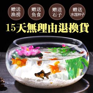 室内<span class=H>水培</span>花盆玻璃花瓶透明大号圆形加厚绿萝水养植物花卉器皿鱼缸