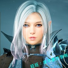 Black Desert stand-alone version of a key-end desktop clothes PC online game pearl production bag pinched face to send GM tools
