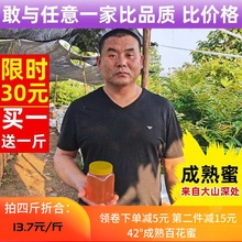 蜂蜜 th花荆条花枣ki自产纯正天然 1000g/2斤装