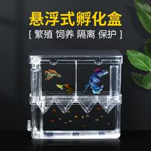 孔雀鱼繁殖盒鱼th4隔离盒斗ma卵孵化产房(小)鱼苗幼大鱼孵化器
