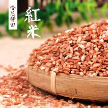 云南哈th红糯米红软qu江米大米非糙米红河元阳红米