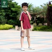 东莞市th岭山镇中(小)is一校服运动夏季套装棉大岭山中(小)学校服