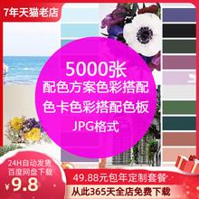 室内设ti方案软装色an卡搭配网页设计师搭配色板jpg图片素材