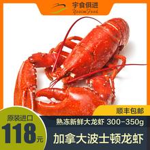 宇食俱ti 加拿大波no虾 进口 熟冻新鲜 300-350g