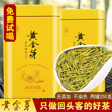 黄金芽to020新茶ca特级安吉白茶高山绿茶250g 黄金叶散装礼盒