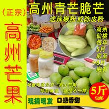 高州生to斤送陈皮粉ha盐广东年例特产酸桃生脆酸新鲜包邮