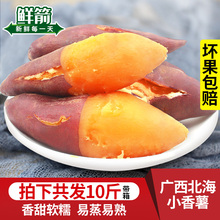 广西北to海边金首指re10斤整箱新鲜现挖鲜甜农家地瓜番薯