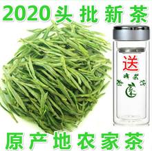 2020新茶tu3前特级黄is徽绿茶散装春茶叶高山云雾绿茶250g