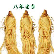 长白山tz鲜参新鲜的zn山的参泡酒土参东北的参非红参