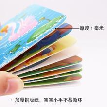 宝宝动ub卡片图片识51水果幼儿幼儿园套装读书认颜色新生大两