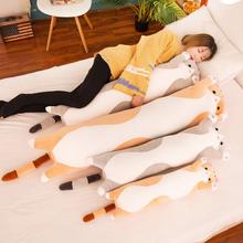 可爱猫咪毛绒玩具长条睡觉