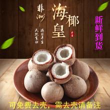 新鲜天vi非洲海椰皇le帮去壳椰青(小)煲汤食材500g包邮