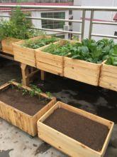 实木花wa长方形露天pi木种菜盆户外大型果树盆室内花箱