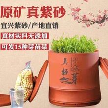 【甜脆wa芽】真好芽bi罐 紫砂发豆芽罐机 家用全自动大容量