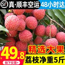 【顺丰wa空】漳州黑bi包邮 当季新鲜时令水果王整箱10