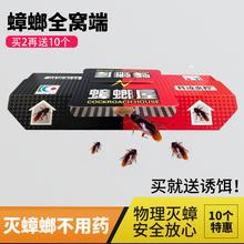 家用环wa灭蟑螂神器ap窝端捕捉(小)强(小)黑屋克星杀除粘板