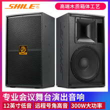 KTVwe业音箱舞台ri庭卡拉OK舞蹈教室全频高档音响狮乐BM99-12