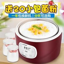 (小)型酸奶机全we3动家用自si舍单的发酵机多功能分杯纳豆米酒