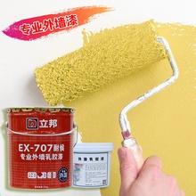 立邦外we防水防晒(小)ll桶彩色涂鸦卫生间墙面涂料包