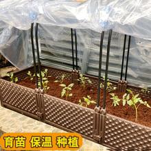 家用大wh种植种菜支cc花盆防雨菜苗箱防寒架耐寒多用暖房骨架