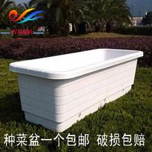阳台种wi盆塑料花盆li 特大加厚蔬菜种植盆花盆果树盆