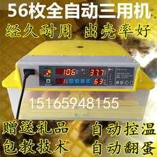 电孵化wi家用孵蛋机ar(小)型孵化箱(小)鸡抱蛋器暖化机器浮