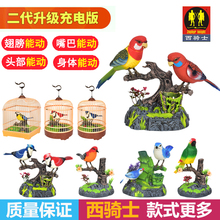 西骑士wo真声控(小)鸟ng应鹦鹉会叫会动会说话宠物鸟笼宝宝玩具