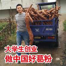 (小)(小)家wo野生天然江ia新鲜老柴葛粉代餐500g送葛片葛花