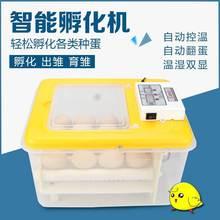 (小)型暖wo机孵蛋器暖wo化机付化器孚伏(小)鸡机器孵化箱抱