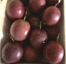 云南德wr特产紫色西te香醇酸甜果现摘500克1斤装