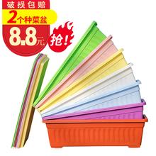长方形wu料花盆阳台de家庭蔬菜加厚树脂特大种菜养花盆