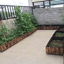 特大长wu形防腐碳化de盆槽阳台楼顶屋顶种菜盆栽包邮