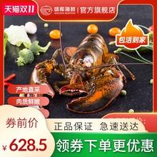 龙虾波xc顿鲜活特大gw龙波斯顿海鲜水产大活虾800-900g